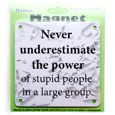 Click to get The Power of Stupid People Magnet