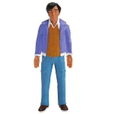 Click to get Big Bang Theory Raj 6 Bendable Figure