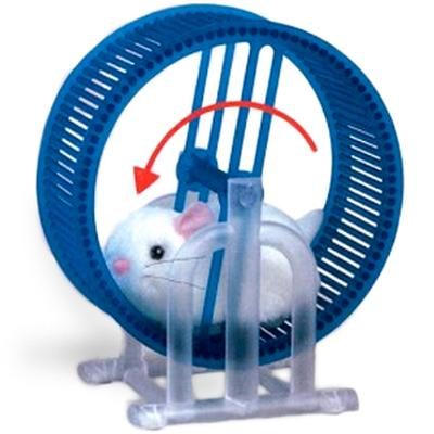 Click to get Wheel Running Hamster