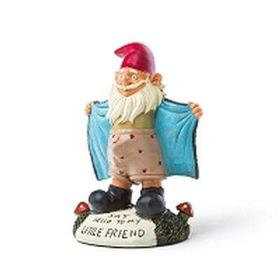 Click to get Perverted Little Gnome