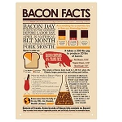 Click to get Bacon Facts Tin Sign